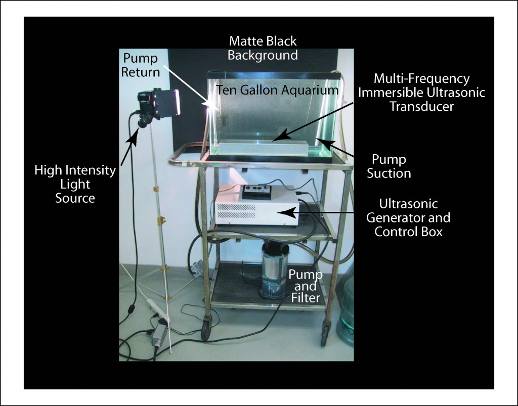 Illustration of an aquarium with an ultrasonic transducer and lighting to see underwater effects of ultrasonics.